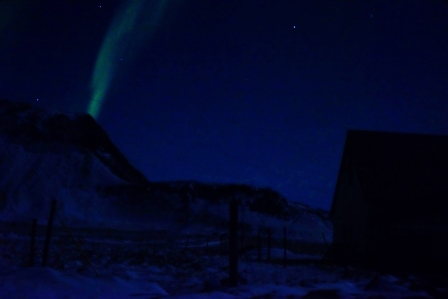 Northern Lights Emerging